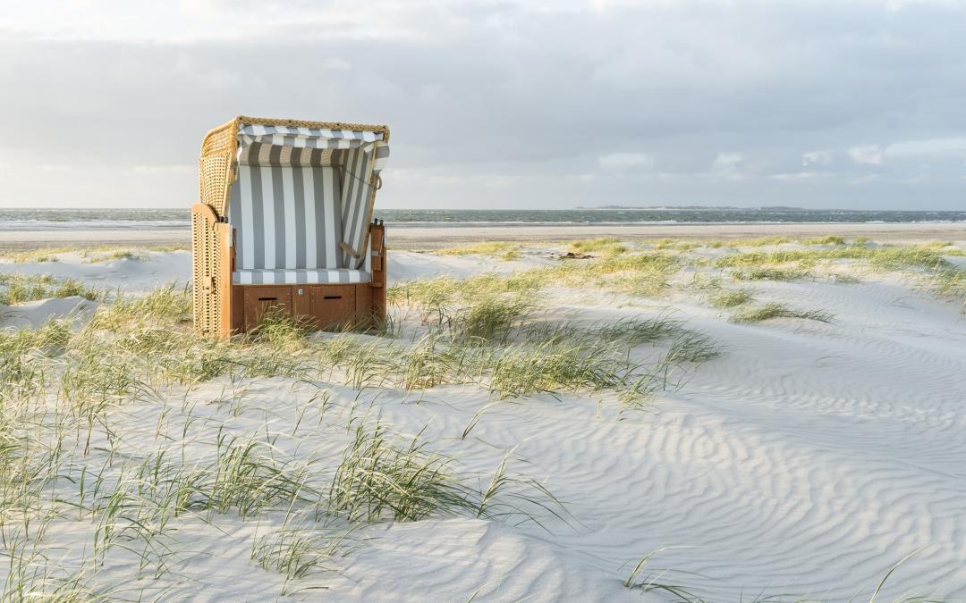 """""""Sie sagen Wasser – Wir sagen Meer"""" – WAMS 11.04.2021"""
